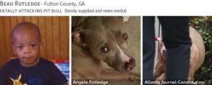 beau-rutledge-2013-fatal-pit-bull-attack-photos