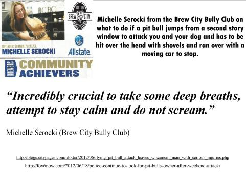 Flying pit bull advice Michelle Serocki