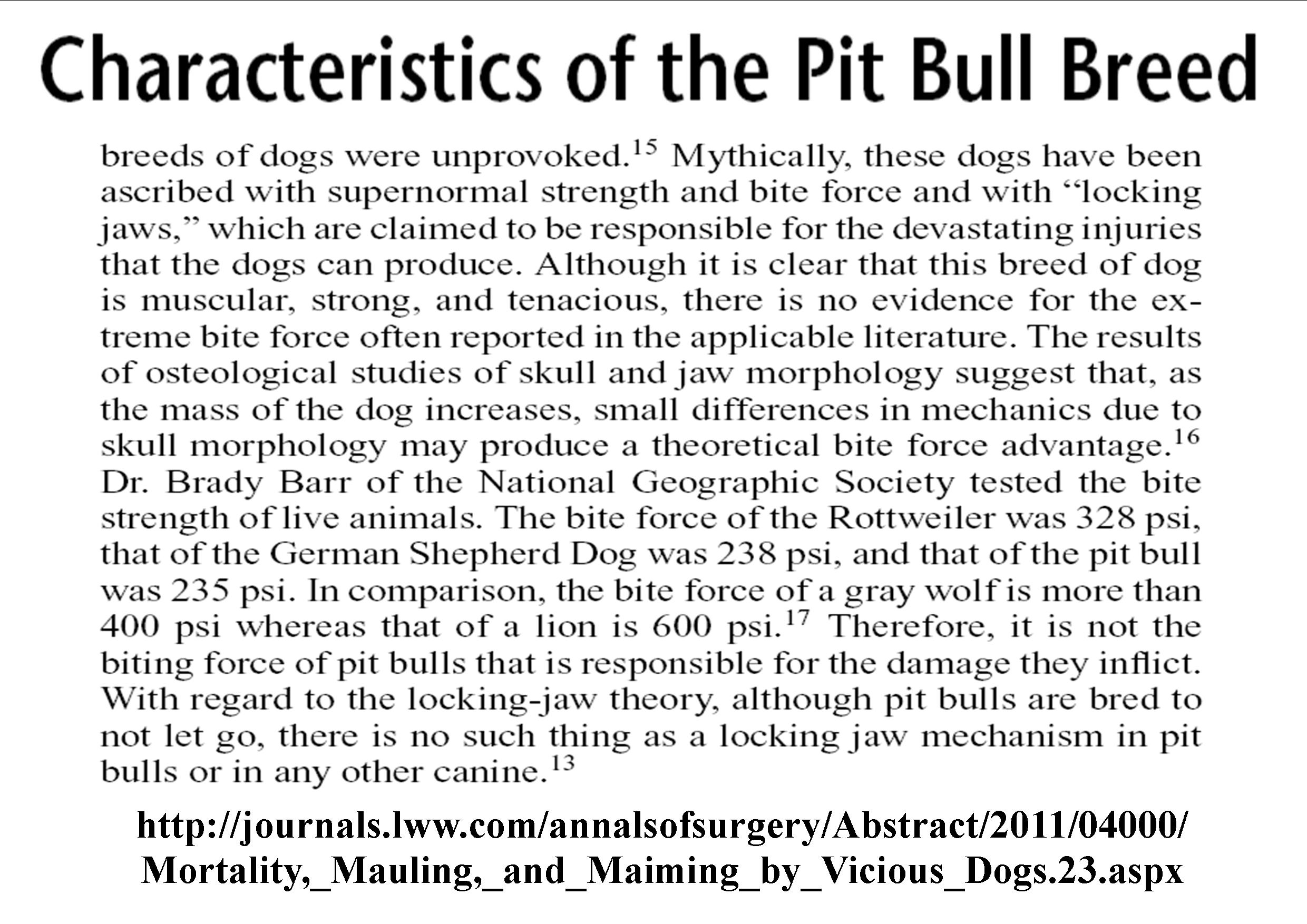 lies in society pitbull terrier essay Persuasive paper on pit bulls american pit bull terrier pit bull prohibition essay pit bull prohibition tell me, what is.